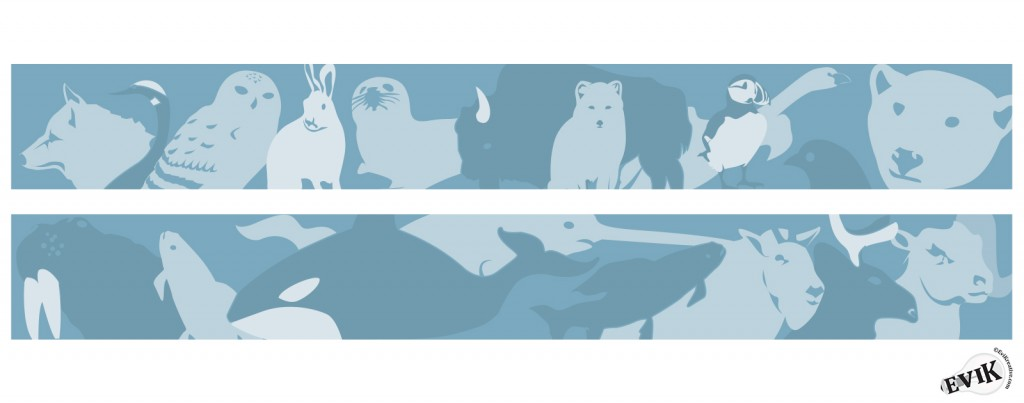Arctic_Animals_Banner_Art